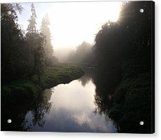 Morning Mist Acrylic Print by Kristina Edwards