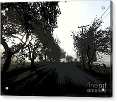 Acrylic Print featuring the photograph Morning Mist by Leslie Hunziker