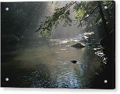 Morning Mist Lifts Off The Tellico Acrylic Print by Stephen Alvarez