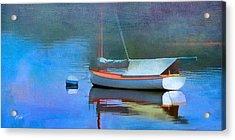 Morning Mist Acrylic Print by Michael Petrizzo
