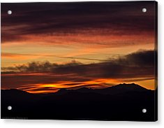 Morning Paint Acrylic Print by Edward Dasso