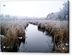 Acrylic Print featuring the photograph Morning Rime by Steven Clipperton