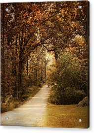 Morning Walk Acrylic Print by Jai Johnson