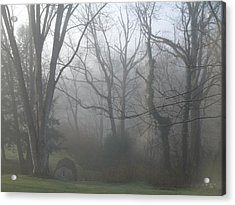 Morning Winter Fog Acrylic Print by James Guentner
