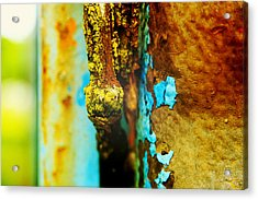 Moss And Rust II Acrylic Print by Toni Hopper