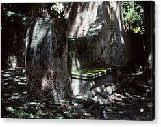 Moss On A Bench Acrylic Print