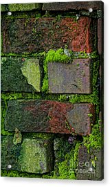 Acrylic Print featuring the digital art Mossy Brick Wall by Carol Ailles