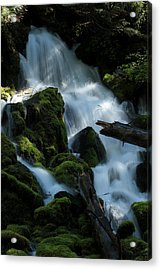 Mossy Cascades Acrylic Print by Harry Snowden