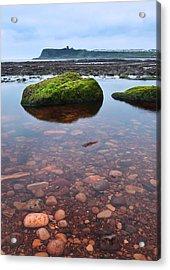 Mossy Rock Acrylic Print by Svetlana Sewell