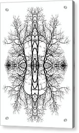 Mother Earth Acrylic Print by Debra and Dave Vanderlaan