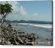 Mother Nature Acrylic Print by Frances G Aponte