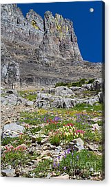 Acrylic Print featuring the photograph Mother Nature's Master Garden 5 by Katie LaSalle-Lowery