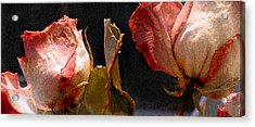 Mother's Roses Acrylic Print