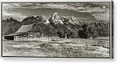 Moulton Barn And The Grand Tetons Acrylic Print by Sandra Bronstein