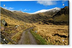 Acrylic Print featuring the photograph Mount Brandon by Barbara Walsh