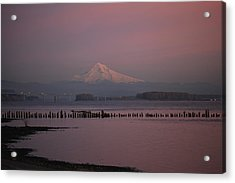 Mount Hood And Columbia River Oregon Washington Acrylic Print by Sam Amato