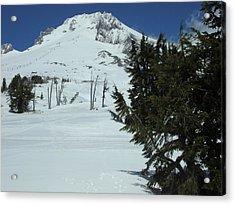Mount Hood Oregon Ski Trail Acrylic Print