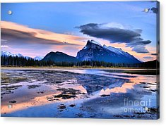 Mount Rundle In The Evening Acrylic Print by Tara Turner