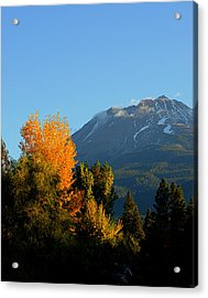 Mount Shasta Fall Acrylic Print
