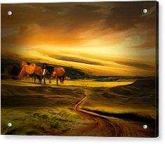 Mountain Horses Acrylic Print by Lourry Legarde