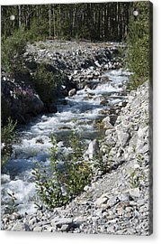Mountain Stream Acrylic Print by George Hawkins