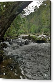Mountain Stream Acrylic Print by Janice Spivey