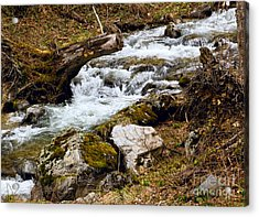 Acrylic Print featuring the photograph Mountain Stream by Les Palenik