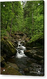 Mountain Stream Acrylic Print by Torsten Dietrich