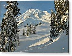 Mountainous Landscape In Mt. Rainer Acrylic Print by Raymond Gehman