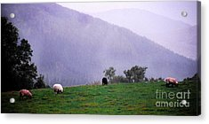 Mourn Mountains Approaching Rain Acrylic Print by Thomas R Fletcher