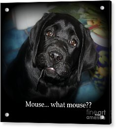 Mouse---what Mouse Acrylic Print