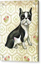 Mr. Iggy The Boston Terrier Acrylic Print by Nancy Mitchell