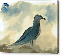 Mr. Jonathon Seagull Of La Jolla California Acrylic Print by Sherri's Of Palm Springs