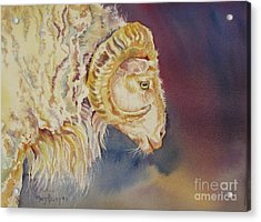 Acrylic Print featuring the painting Mr. Ram by Mary Haley-Rocks