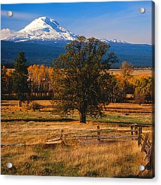 Mt. Adams Autumn Acrylic Print by Todd Kreuter