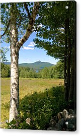 Mt. Chocorua Summer Vertical Acrylic Print