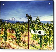 Mt Hood Winery Acrylic Print