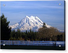 Mt. Rainier Fenced In Acrylic Print