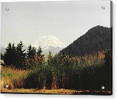 Acrylic Print featuring the photograph Mt. Rainier In Hiding by Sadie Reneau