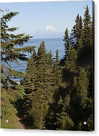Mt Redoubt Acrylic Print by George Hawkins