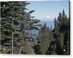 Mt. Redoubt View Acrylic Print by George Hawkins