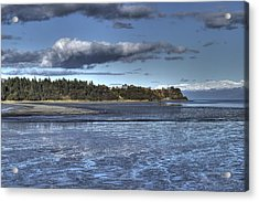 Acrylic Print featuring the photograph Mud Bay  by Michele Cornelius