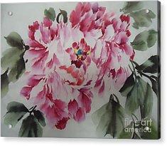 Mudan Acrylic Print by Dongling Sun