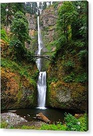 Multnomah Falls Oregon Acrylic Print by Sam Amato