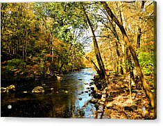 Acrylic Print featuring the photograph Musconetcong River by Brian Hughes