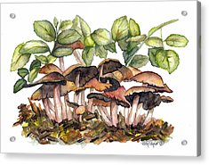 Mushroom Forest Acrylic Print by Terry Taylor