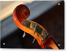 Acrylic Print featuring the photograph Music by Rima Biswas