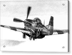 Mustang Away Acrylic Print by Lyle Brown