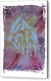 Mustang Dance Acrylic Print by Mark Schutter