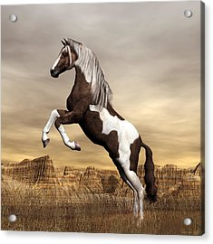 Acrylic Print featuring the digital art Mustang by Walter Colvin